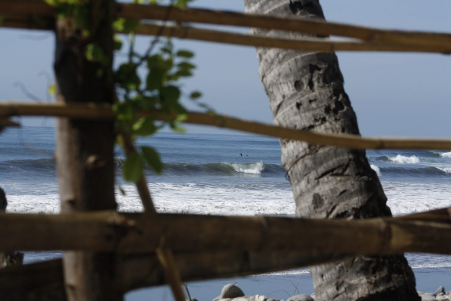 Pacific Surf